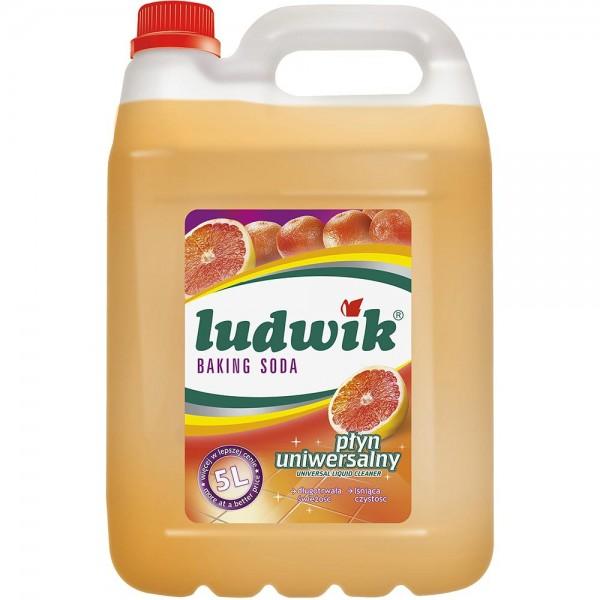 Հատակ և տարբեր մակերեսներ մաքրող միջոց Ludwik Baking Soda